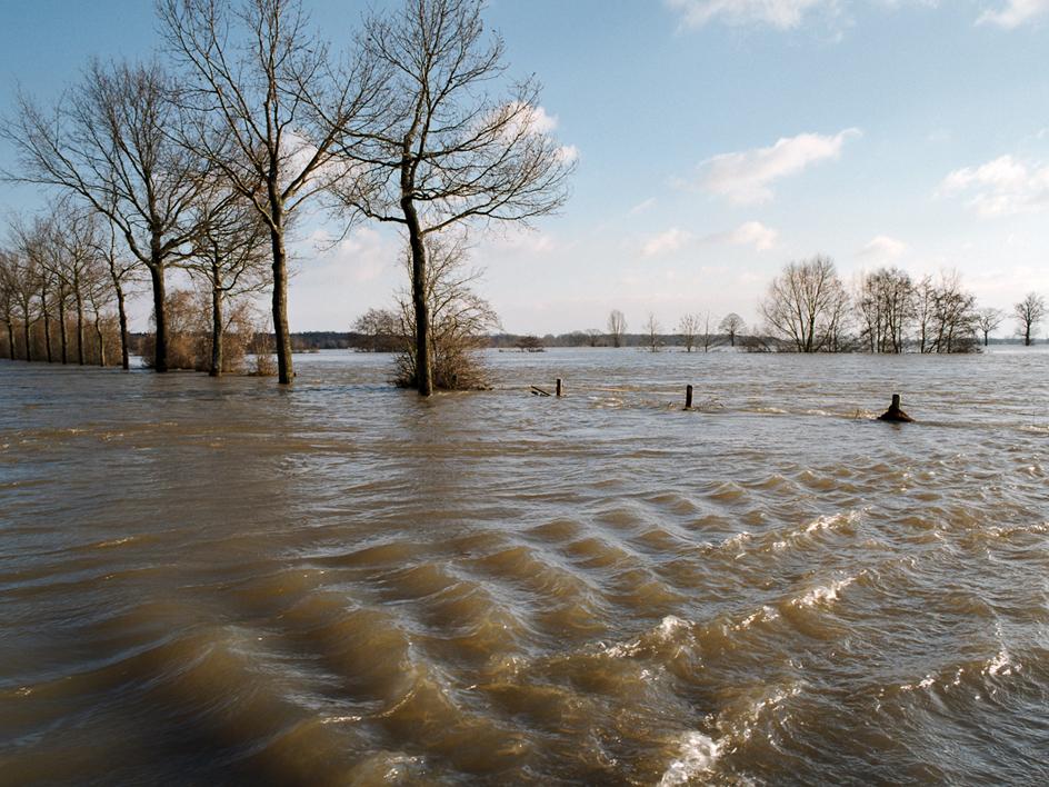 Hoogwater, ondergelopen uiterwaarden